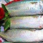 Đưa cơm với món cá bạc má kho dứa
