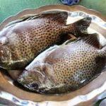 Đặc sản cá dìa nướng muối ớt thơm ngon hấp dẫn